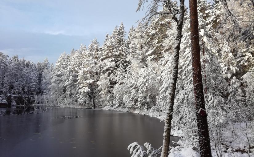 Víkend v zasněžené přírodě:Nuuksio